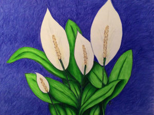 Laura's Creative Cottage. Peace Lilies by Laura Chalk. Inner peace.